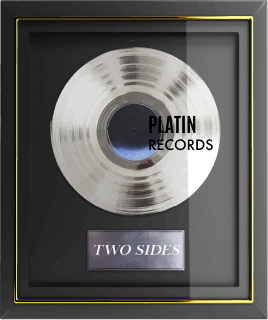 two-sides-music-label-website-platin